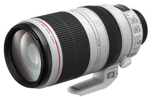 Canon EF 100-400mm f/4.5-5.6L IS II USM - 1