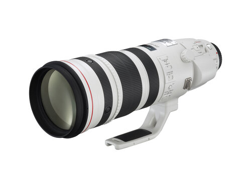 Canon EF 200-400mm f/4L IS USM Extender 1.4X #3