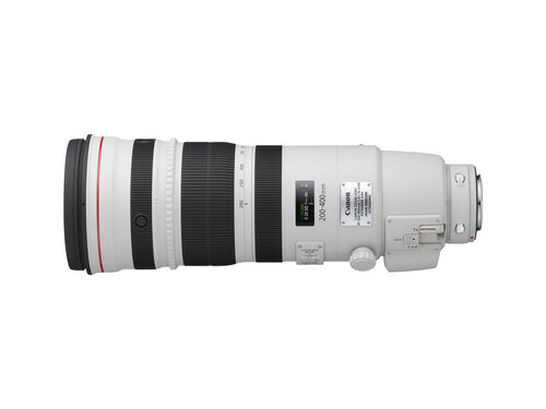 Canon EF 200-400mm f/4L IS USM Extender 1.4X #4