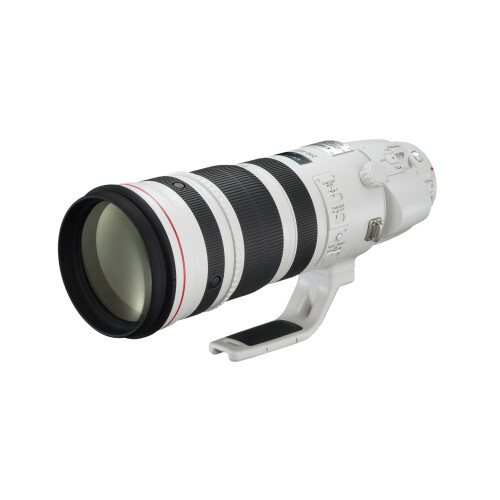 Canon EF 200-400mm f/4L IS USM Extender 1.4X #1