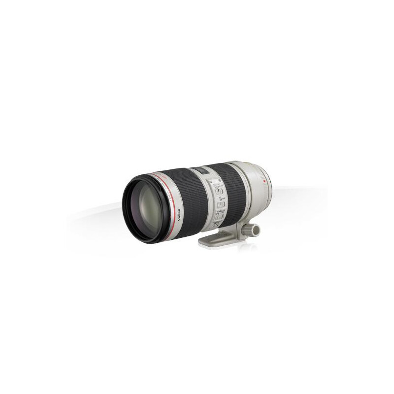 Canon EF 70-200mm f/2.8L IS II USM - 4
